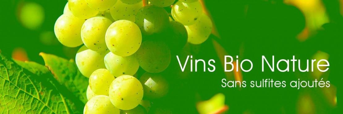 Volubilis (Vins Bio SSA)